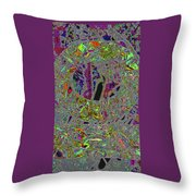 41602 Throw Pillow