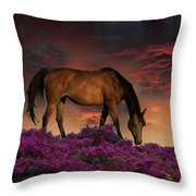 4252 Throw Pillow