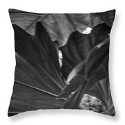 4327- Leaf Black And White Throw Pillow