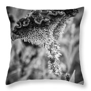 4390- Flower Black And White Throw Pillow