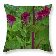4398- Flower Throw Pillow