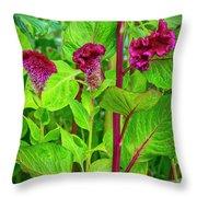 4398- Flowers Throw Pillow