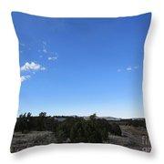 Desert Landscape Throw Pillow