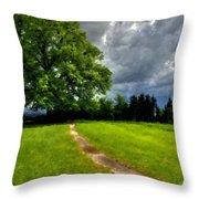 Landscape Print Throw Pillow