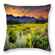 P G Landscape Throw Pillow