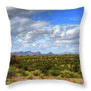 Sonora Desert Throw Pillow