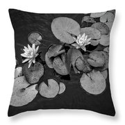 4425- Lily Pad Black And White Throw Pillow