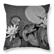 4432- Lily Pads Black And White Throw Pillow