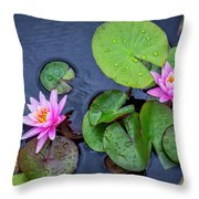 4432- Lily Pads Throw Pillow