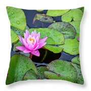 4434- Lily Pads Throw Pillow