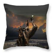 4436 Throw Pillow