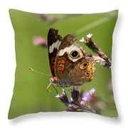 4467 - Butterfly Throw Pillow