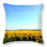 P W Landscape Throw Pillow