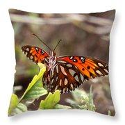 4529 - Butterfly Throw Pillow