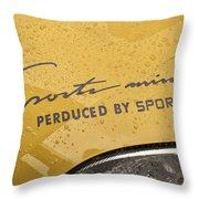 4582- Decal Throw Pillow