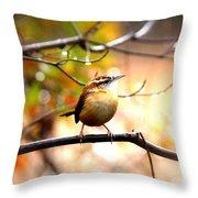 4646 - Carolina Wren Throw Pillow