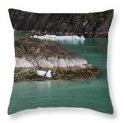 Alaska_00047 Throw Pillow