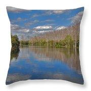 47- Everglades Serenity Throw Pillow