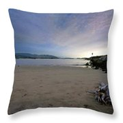 Landscapes To Paint Throw Pillow
