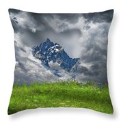 4742 Throw Pillow