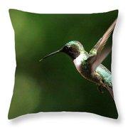 4753 - Ruby-throated Hummingbird Throw Pillow