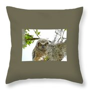4799 Throw Pillow
