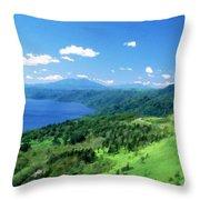 Pro Landscape Throw Pillow