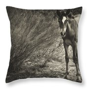 Wild Mustangs Throw Pillow
