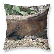 Wild Mustangs Throw Pillow