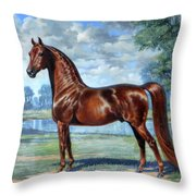 #49 - Aquarian Revelry Throw Pillow
