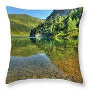 Art Landscapes Throw Pillow