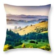 Walls Landscape Throw Pillow