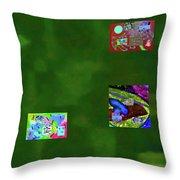 5-6-2015cabcdefghijkl Throw Pillow