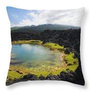 Ahihi Kinau Natural Reserve Throw Pillow