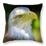 American Bald Eagle Throw Pillow