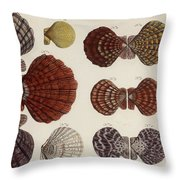 Aquatic Animals - Seafood - Shells - Mussels Throw Pillow