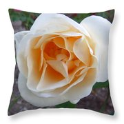 Australia - White Rose Flower Throw Pillow