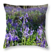 Bluebells Near Effingham In The Surrey Hills England Uk Throw Pillow