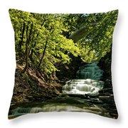 Cascadilla Gorge Falls Throw Pillow