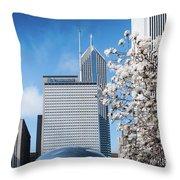 Chicago Bean Millenium Park Throw Pillow