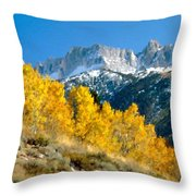 D C Landscape Throw Pillow