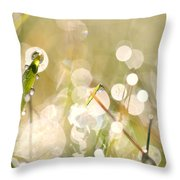 Dew In Grasses Throw Pillow