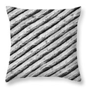 Diffraction Grating Tem Throw Pillow
