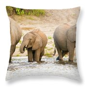 Elephants At The Bank Of Chobe River In Botswana Throw Pillow