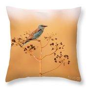 European Roller Coracias Garrulus Throw Pillow