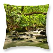 Framed Landscape Throw Pillow
