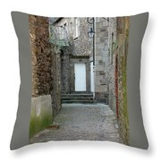 French Doors Throw Pillow