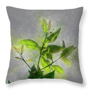 Fresh Growth Of Healthy Green Leafs  Throw Pillow
