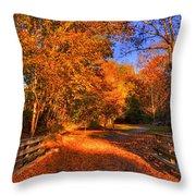 Glen Echo Park Throw Pillow