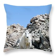 Hiking The Mount Massive Summit Throw Pillow